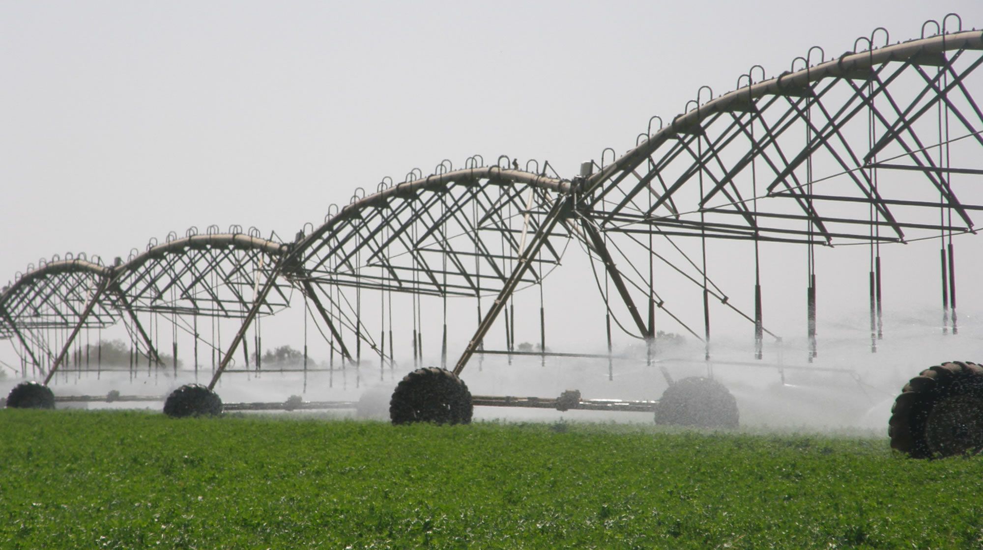 Optimal Pivot Irrigation In Africa Amp Middle East Agriculture