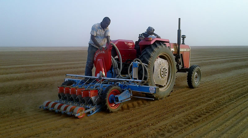 Vegetable Planting In The Middle East Africa Ics Equipment